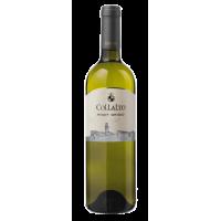 Pinot Grigio 2013 IGP (Rulandské šedé) - suché, bílé - 0,75l