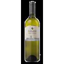 Pinot Grigio 2013 IGP - white, dry